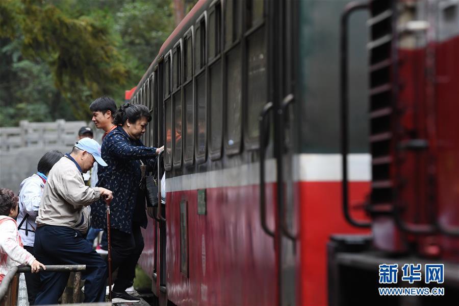搭乘阿里山森林小火车欣赏美景 深受游客青睐