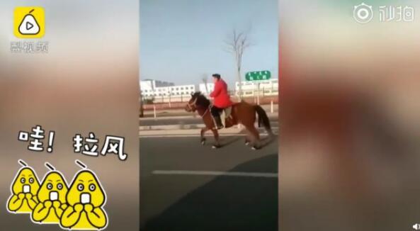 内蒙古学生骑骆驼上学 够拉风吧