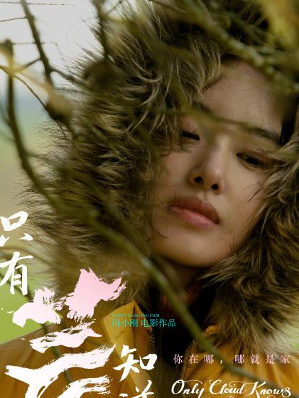 冯小刚新片《只有芸知道》首曝海报 黄轩杨采钰主演