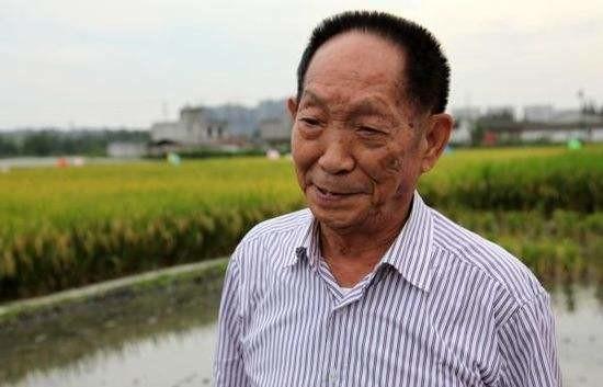 袁隆平团队第三代杂交水稻技术,平均亩产达1046.3公斤