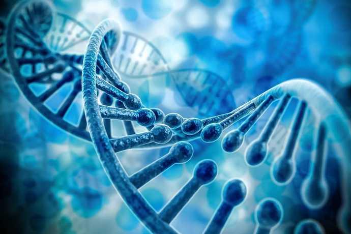 新基因疗法可用于治疗颞叶癫痫 大脑区域将永久性产生药物储备