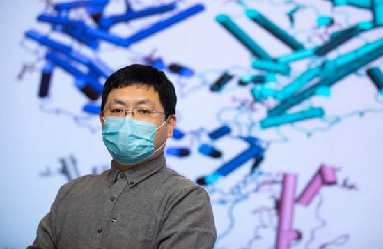 首次!西湖大学成功解析新冠病毒细胞受体的空间结构
