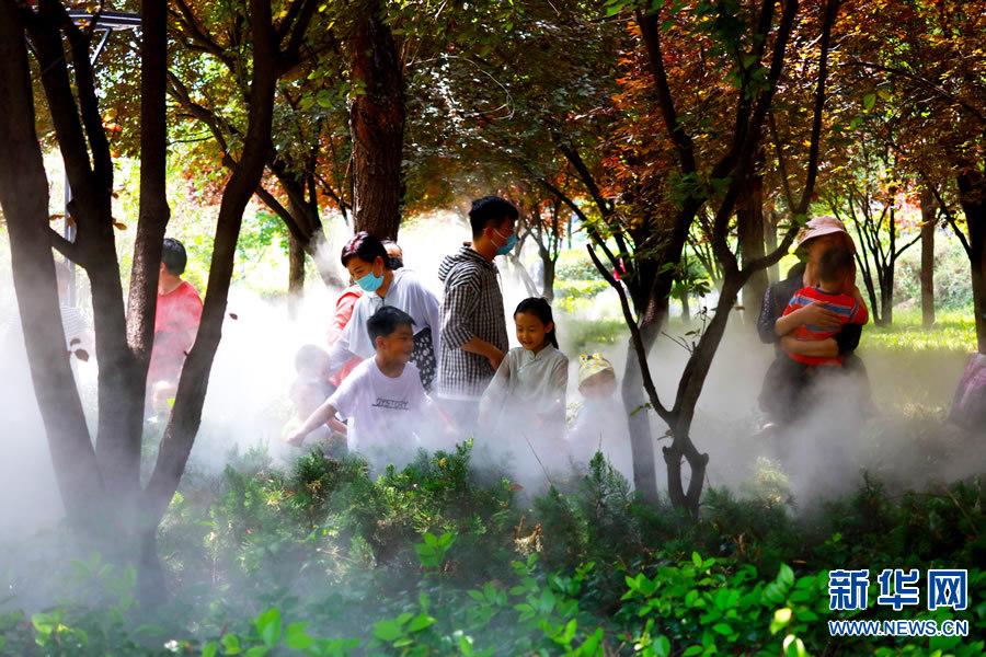 河南许昌:雾森景观宛如仙境 提高市民幸福指数