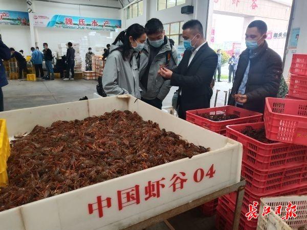 潜江小龙虾市场价多少钱一斤? 都快被主播卖光了