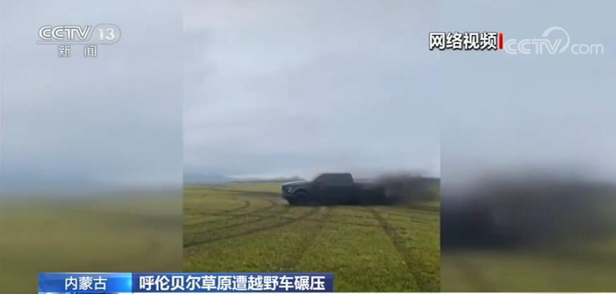 呼伦贝尔草原遭越野车肆意碾压司机与车主现身道歉赔偿并种草-项城网
