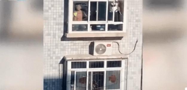 石家庄市民擦玻璃大扫除模式开启 网友:再打游戏不会被骂了