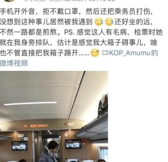 女子高铁上不戴口罩叫骂三小时 还打哭乘务员被警方带走