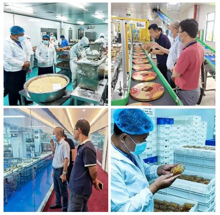 海口市开展月饼生产环节排查行动 将持续到中秋节后