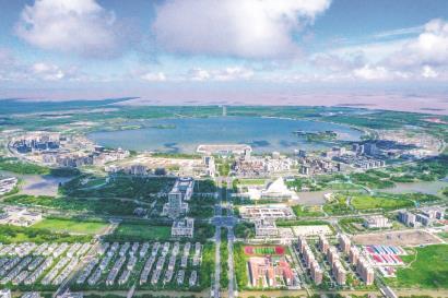 """南汇新城:""""会呼吸、有生命""""展现滨海城市活力"""