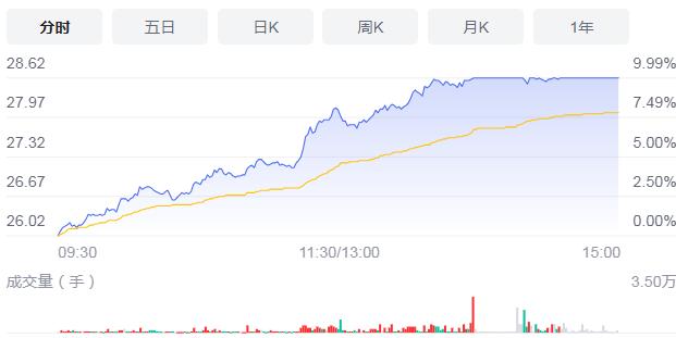 双汇发展涨9.99%报价28.62元 今年上半年业绩如何?